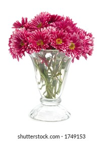 Vase of small red flowers isolated on white.