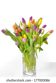 Vase of Tulips isolated on white background