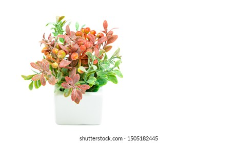 Vases of flowers, Artificial orange and green flower bouquet with white vase isolated on white background. Copy space, Selective focus.