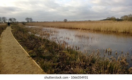 Vast landscape view of Norfolk Broad at Hickling in East Anglia in rural countryside England with brown beige reeds and dried grass waterways lakes with trees bushes on nature reserve cloudy storm sky