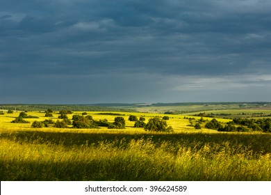 Vast landscape of Yamskaya Steppe nature reserve in the evening before thunderstorm with yellow grasses on the foreground, Belgorod region, southern Russia