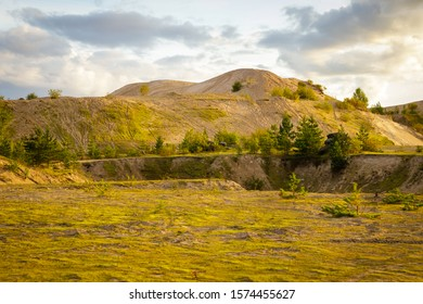 Vast plain and sand hill covered with green moss. Landscape of Karelia.