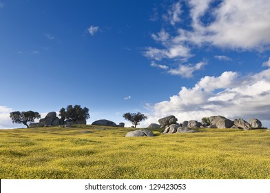 Vast plains of the Alentejo country in spring, Portugal