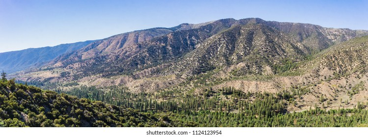 Vast valley and canyon covered in pine trees in the San Bernadino Mountains of southern California.