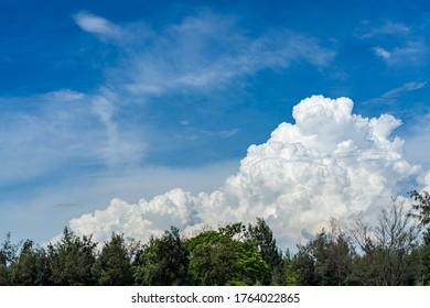 青い空の背景に広大な白い積雲