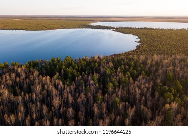Vasyugan swamp from aerial view. Autumn landscape. Taiga forest. Nature reserve. Siberia, Russia.