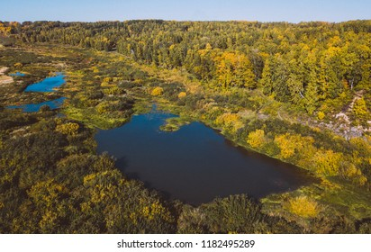 Vasyugan swamp from aerial view. Taiga forest landscape. Lake in forest