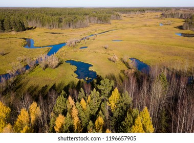 Vasyugan swamp from aerial view. Taiga forest landscape. Beautiful ecological view.  Oil and peat reserves. Strezhevoy, Siberia, Russia.
