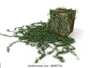 Vault overgrown with ivy