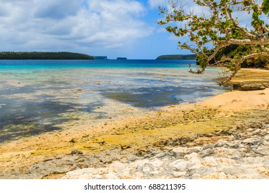 Vava'u archipelago, Neiafu, Tonga. View of tropical beach in the Vava`u island.