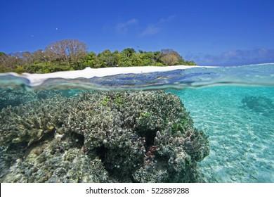 Vava'u Island, Tonga