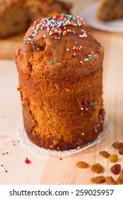 Vegan Easter kulich with dried raisins, without eggs and milk