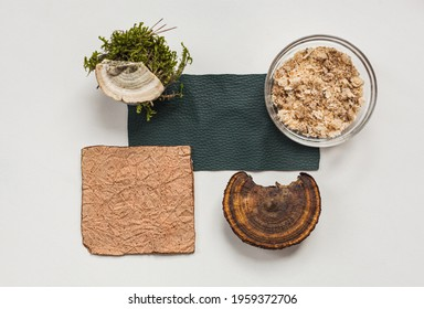 Vegan leather sample, leather from mushroom mycelium, a mushroom and sawdust top view, eco friendly concept alternative bio leather