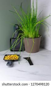 vegan raclette pan with corn
