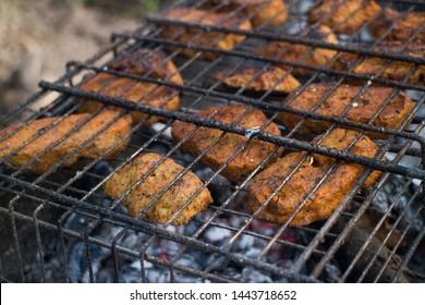 Vegan tasty and healthy seitan grill