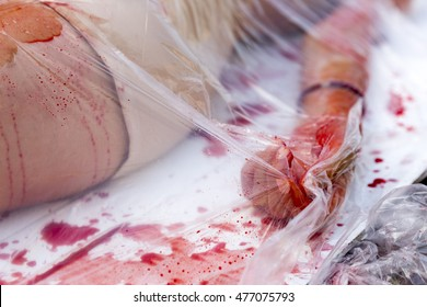 Vegans and vegetarians animal rights activists covered themselves in blood and wrapped themselves in meat packaging protesting against killing animals for meat or clothing. Human hand.