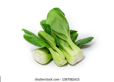 Vegetable, Delicious Fresh Green Bok Choy, Pok Choi or Pak Choi Isolated on White Background
