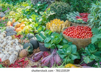 Vegetable, Fresh mixed fruits, Thai agricultural produce to be exhibited at the fair.Many kinds of Thai fruits.Thai agricultural crops.