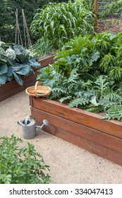 Vegetable garden beds with trug and watering can