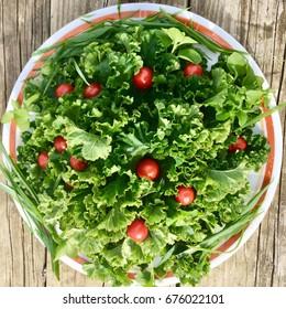 Vegetable Mallow Salad