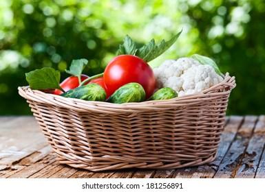 vegetables in basket on on old wooden table in garden