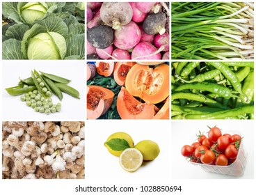 The vegetables collage
