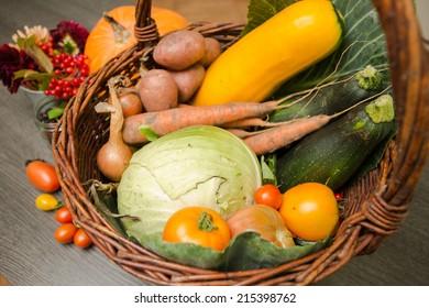 Vegetables fresh from the harvest
