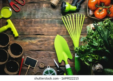 Vegetables harvesting and gardening work tools on wooden table flat lay background with copy space.