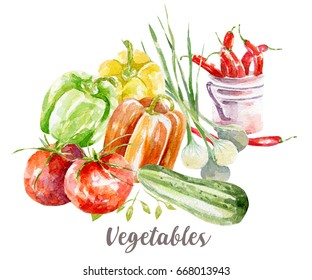 Vegetables illustration. Hand drawn watercolor on white background.
