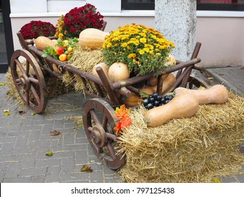 Vegetables and pumpkins on hay in a wooden cart, the season of harvest on the farm thanksgiving