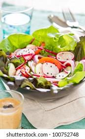 Vegetables salad with radish and black sesame
