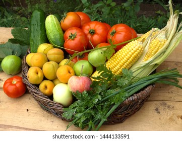 Vegetables in a wicker basket on the background of the vine and green foliage.