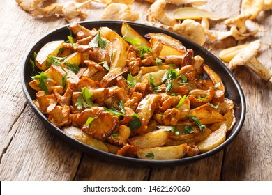 Vegetarian dish fried potatoes with garlic, parsley and chanterelle mushrooms closeup on a plate on the table. horizontal