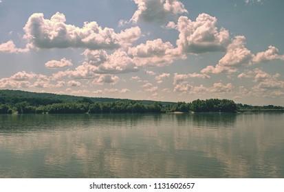 Vegetation at the river Danube. River vegetation in the Danube. Position - Slovakia.