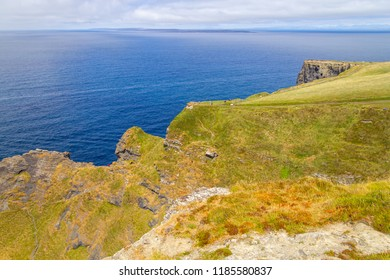 Vegetation and rocks in Cliffs of Moher, Doolin, Clare, Ireland