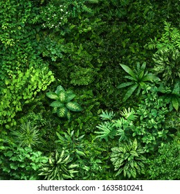 Vegetative background from leaves and plants. Lush, natural foliage. Green vegetation backdrop. Top view of a bed of green plants background. High quality image for professionnal compositing. - Shutterstock ID 1635810241