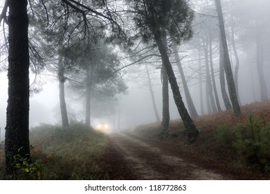 vehicle traveling along a forest road in a mountain of Madrid, Spain