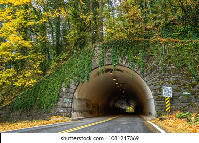 Vehicles drive through a stone tunnel in a hill running through a forest in autumn with a reduced speed ahead sign.