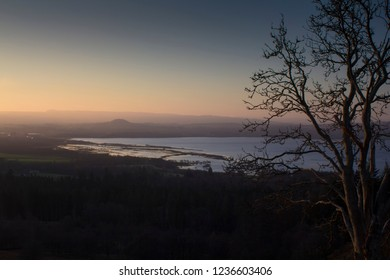 Veiw of a lone tree standing on conic hill in Stirlingshire Scotland on a cold and clear winter morning surnrise.
