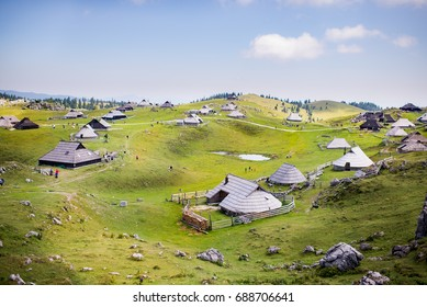 Velika planina plateau, Slovenia, Mountain village in Alps, wooden houses in traditional style, popular hiking destination, cattle cows grasing