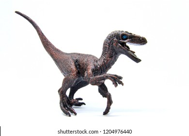 Velociraptor figure Dinosaur model on white background | Decorative and toy collection for kids and boy