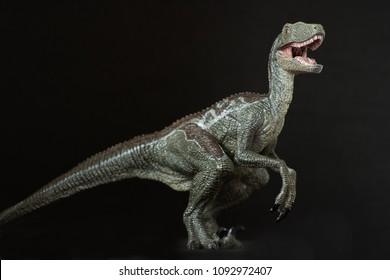 A velociraptor on black background