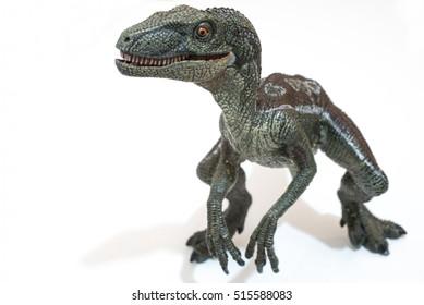 Velociraptor on white background