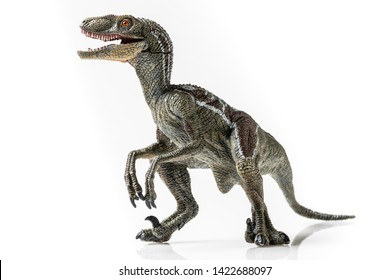 Velociraptor, plastic figurine on white background