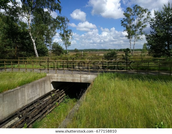 VELUWE, THE NETHERLANDS - MAY 2017: Herpetoduct, a tunnel for reptiles and amphibians under the highway N310. Green bridges or wildlife crossings connect the animals habitats.