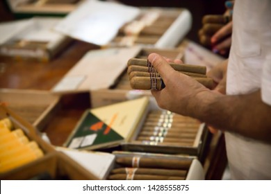 Vendor holding cigars in a cigar shop.