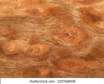 Veneer eucalyptus sapel natural wood. Material for interior and furniture