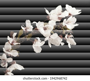 Venetian blind effect,  Photos of fruit flowers on decorative frame, blind decorated with fruit flowers, almond blossom, pruno flower, cherry blossom,