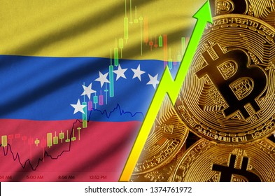 Venezuela flag and cryptocurrency growing trend with many golden bitcoins