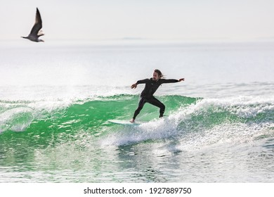 Venice Beach, CA - USA - January 1, 2021: Surfer riding a wave with seagull flying into frame